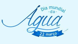 Dia mundial da água 2017 Free HD Video