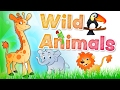 The ANIMALS For Kids Wild Animals English Vocabulary mp3