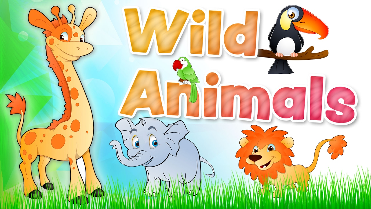 The ANIMALS for kids Wild animals english vocabulary