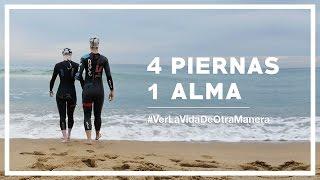 4 PIERNAS 1 ALMA