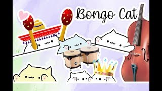 Bongo Cat Plays Different Instruments Music Video 🎶
