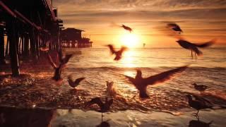 Offshore Wind & Roman Messer feat. Ange - Suanda (Aurosonic Progressive Remix)