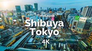 4K TimeLapse / Shibuya Tokyo