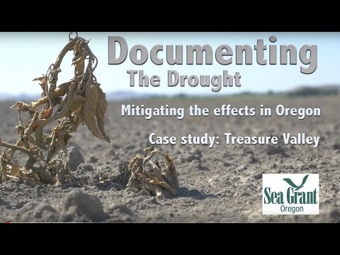 Documenting the Drought: Treasure Valley