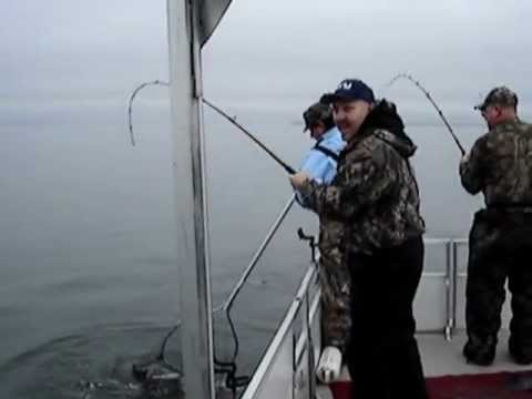 Monster Santee Cooper Blues- Catfishing SC With Capt Darryl Smith