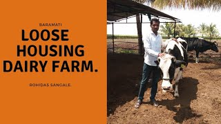 मुक्ता Loose Housing Dairy Farm,  Shade and Milking Details By Rohidas Sangale  (Marathi)
