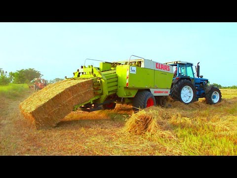 Tractor Agriculture farming Work  in Punjab pind