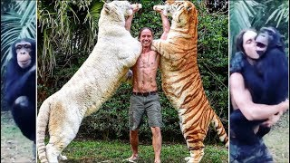 REAL TARZAN RAISED WITH TIGERS KODY ANTLE