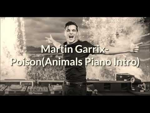 Martin Garrix - Poison [Animals Piano Intro] ➕❌