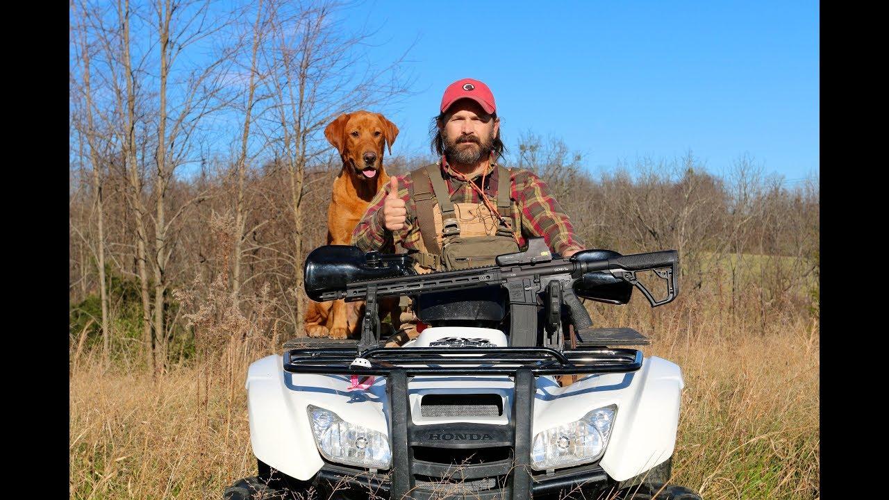 Fox Red Labrador Retriever Training Session