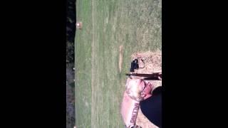 Me shooting my M1903-A3