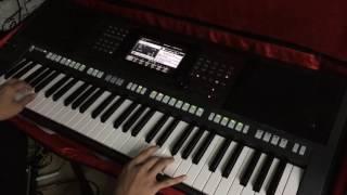 Con Tim Dại Khờ Organ cover - quang ky