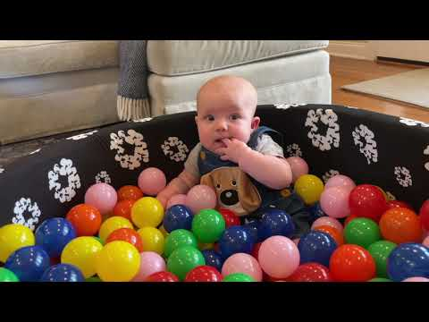Babies in a Ballpit!