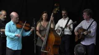 John Reischman & The Jaybirds - Set 2 at the Fifth String