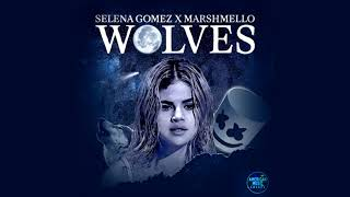Selena gomez - wolves (live at american music awards 2017 / audio)