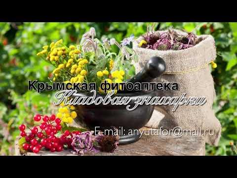 Лимонник крымский