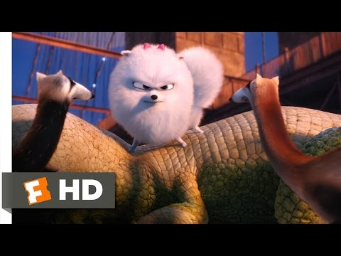 The Secret Life of Pets - Gidget Saves Max Scene (7/10) | Movieclips Mp3