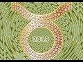 Прогноз на 2019 год для Тельца  от Сияны