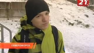 Проблема с бродячими собаками в Североморске.