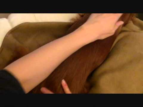 Canine Massage 101: Effleurage