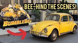 BUMBLEBEE: BEE-HIND the SCENES!