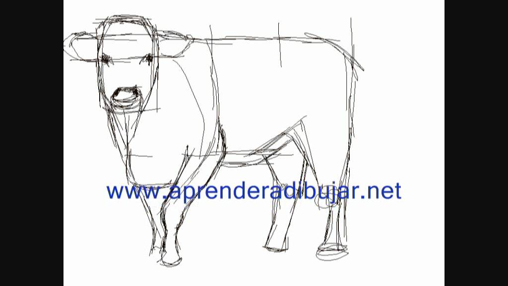 Kuh Zeichnung - Online Zeichnen Lernen - YouTube
