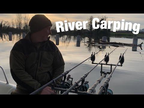 River Lot Carp