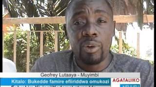 Kitalo: Bukedde famire efiiriddwa omukozi thumbnail