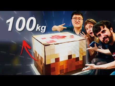 WE MADE THE WORLD&39;s BIGGEST MINECRAFT CAKE 100kg200+lbs