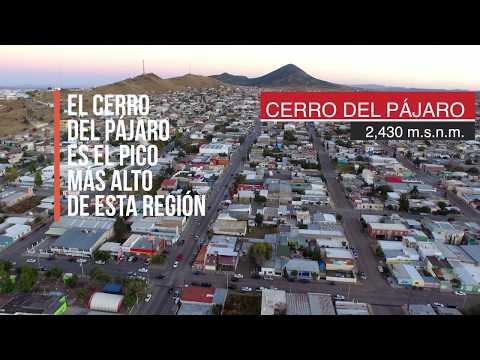 SONIDOS DESDE EL AIRE - CUAUHTÉMOC, CHIHUAHUA MX