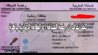 كيف تعرف ان رخصة السياقة او البطاقة الرمادية جاهزة