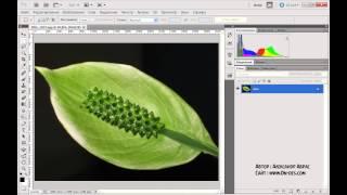 Интерфейс программы Photoshop(Фотошоп) Уроки фотошопа Урок 1