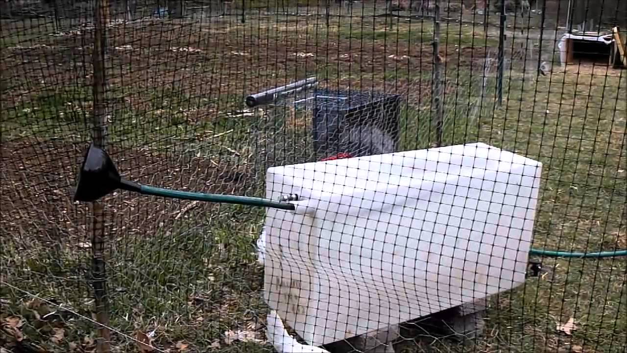 Off Grid Automatic Chicken Watering System Using Rain
