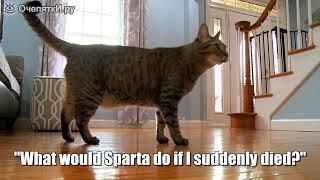 Если хозяин умер,то кошка...
