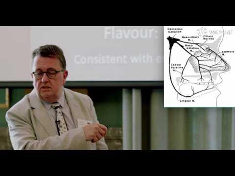 Professor John Prescott - Taste Matters: Why We Like the Food We Do