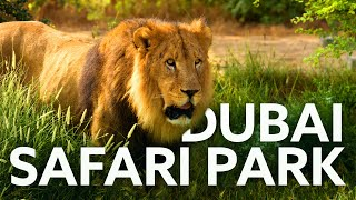 Dubai Safari Park Trip / Number 1 Zoo / Must Visit Place In Dubai [rathzandsowz]