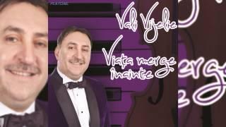 COLAJ MANELE cu VALI VIJELIE - Album Viata merge inainte
