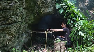 How to Set uṗ a tent to Live in a Cave, Survival in the Tropical Rainforest, Ep 162