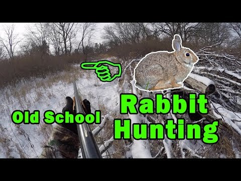 CHASING TAIL! Rabbit Hunting | Found Abandoned(?) Tent In The Woods
