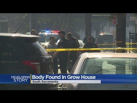 Man Found Shot To Death In South Sacramento Marijuana Grow House