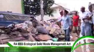 LOREN LEGARDA: Environment TVC - 2013 Senatorial Elections