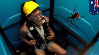 Download Video Penis pria digigit laba-laba untuk kedua kalinya saat di wc umum - Tomonews MP3 3GP MP4