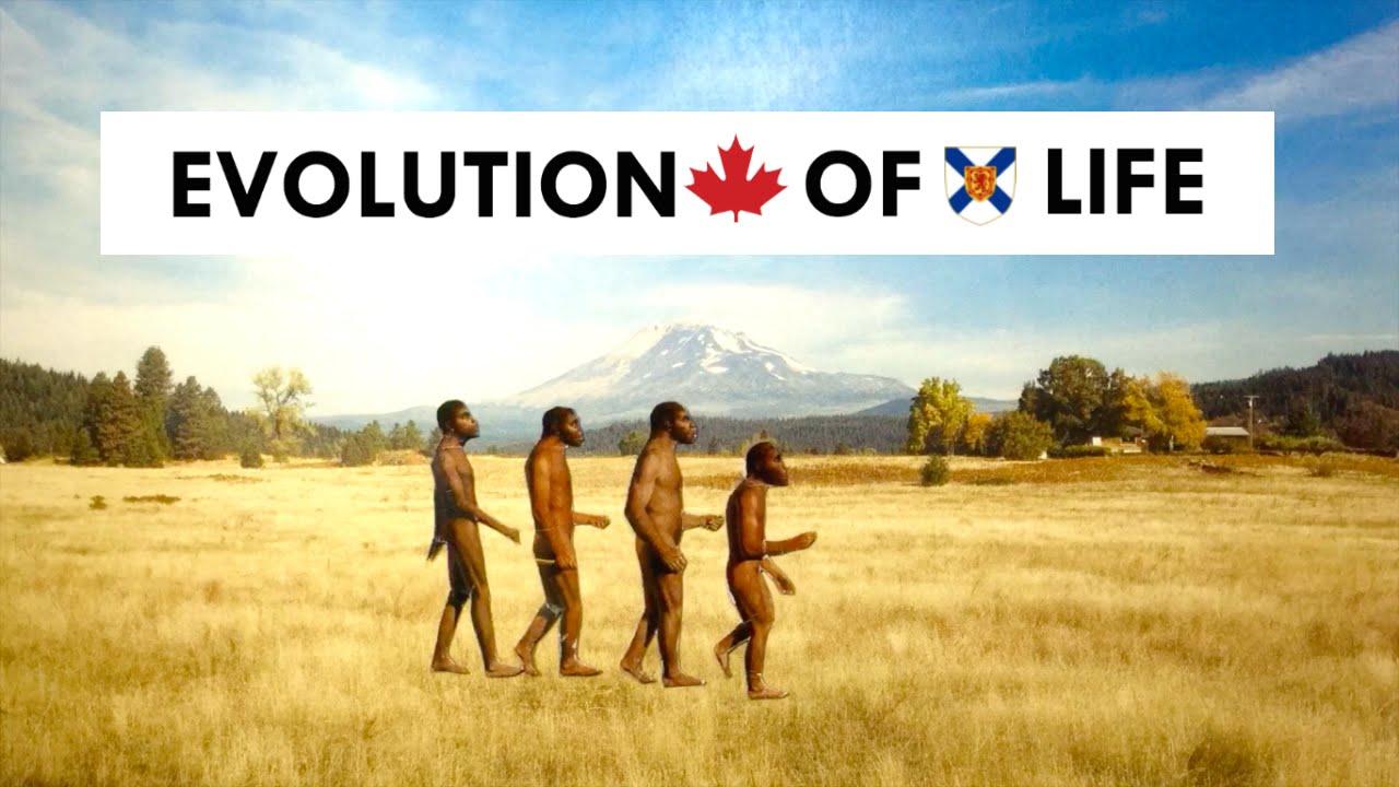 evolution of life - 1280×720