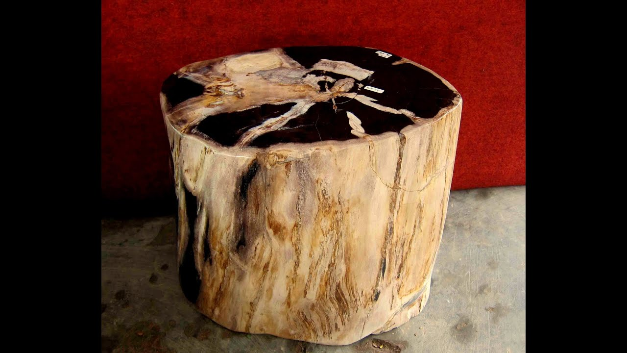 Petrified Wood Stools on Sale & Petrified Wood Stools on Sale - YouTube islam-shia.org