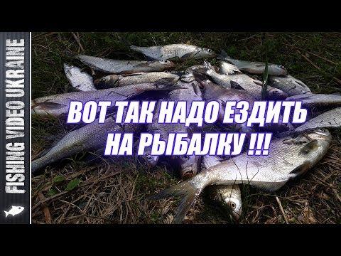 ТРЁХДНЕВНАЯ РЫБАЛКА И ОТДЫХ НА ДЕСНЕ 👍👍👍 | FishingVideoUkraine