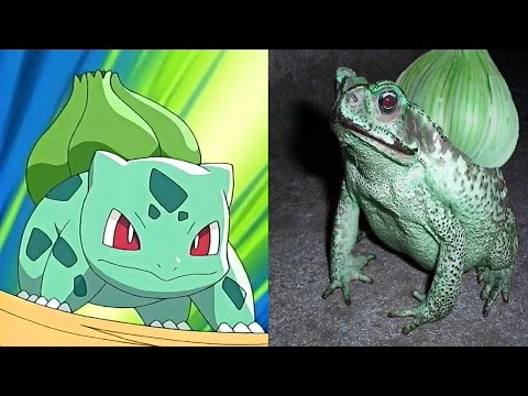 Thumbnail: 10 Pokemon That Actually Exist In Real Life