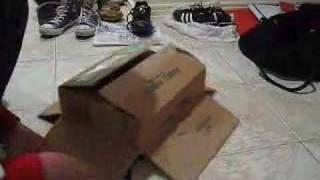 Kaka Chu the Box Cat 2