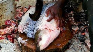 Amazing Cutting Fish | Fastest Rohu Fish Cutting | Big Carp Clean And Fillet Videos