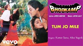 Tum Jo Mile Audio Song - Bhookamp|Kumar Sanu|Alka Yagnik|Mamta Kulkarni|Mamta Kulkarni