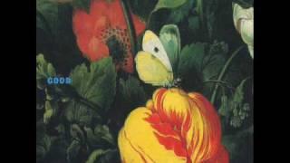 Morphine - I know you (part II) - Album Good (1992)